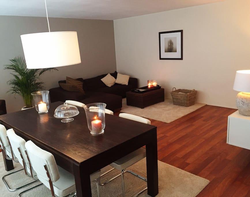 Warme inrichting van dit luxe appartement in de chique wijk Kralingen.