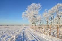Vinter i Viken