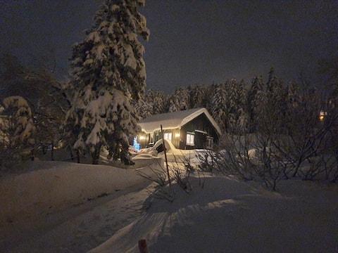 Book din vinterhelg. Langrenn og alpin vis a vis.