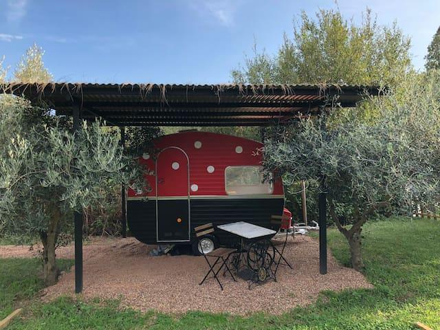 Caravan Glamping. N. 4: Coquito