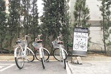 Bicycle rental in front of the lobby