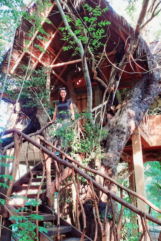 Habarana Ambasewana resort -Amazon Tree House