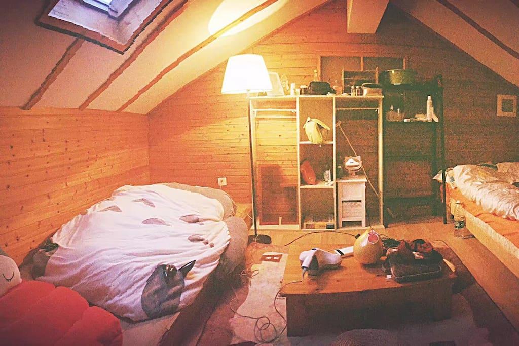 三楼空间很大 /一个龙猫床 一张双人床