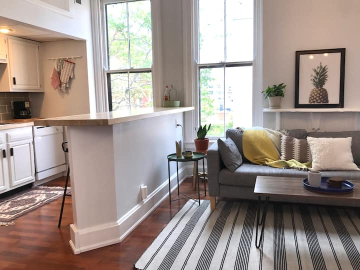 Renovated Downtown/OTR Condo Near Everything