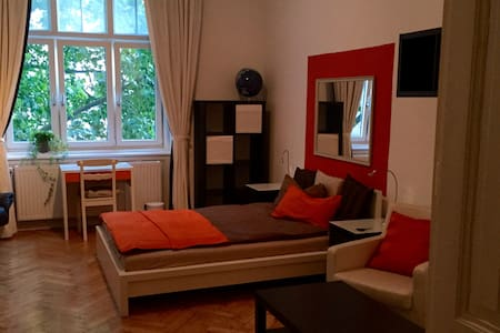 Spacious 1 bedroom private flat in prime location - Wien - Apartment
