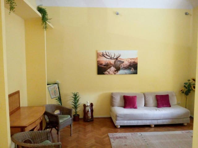 TWO ROOM APT ★NEAR MAIN SQUARE ★SLEEPS 4 ★70M²