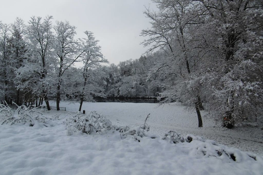 La plage en hiver (2)