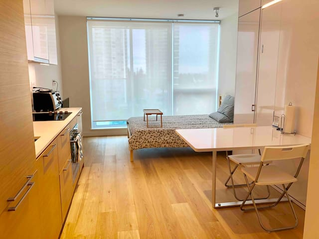 Surrey Central skytrain mall studio apartment
