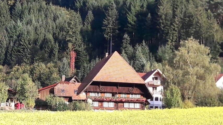 Ferienwohnung Bühlerstein - Gutach (Schwarzwaldbahn) - Byt