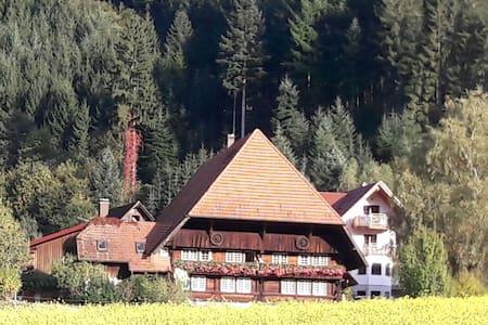 Ferienwohnung Bühlerstein - Gutach (Schwarzwaldbahn)