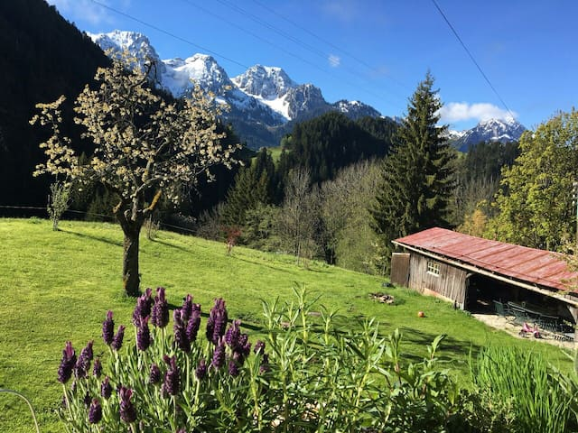 Cosy single room in traditional Swiss Chalet - Rougemont, CH - Rumah