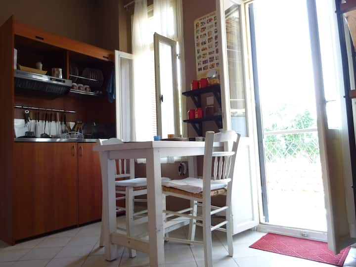 Sweet, small, sunny apartment in the city center