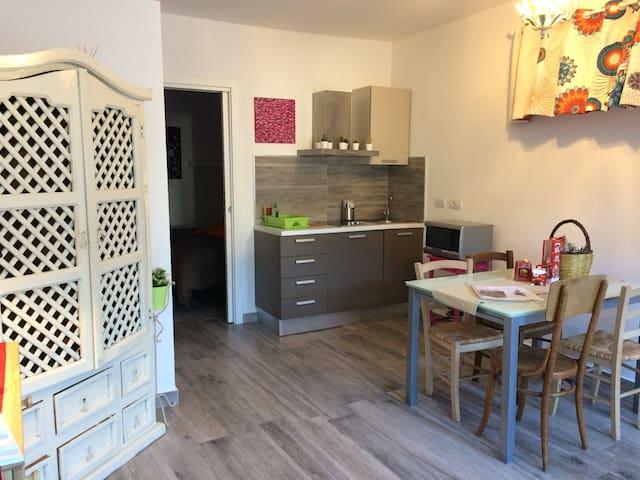 Sorrento beautiful home with private garden - Sant'Agnello - Apartament
