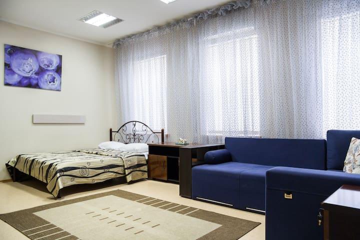 П33/1-Квартира с камином