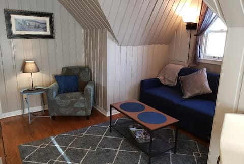 Augusta Place Too - Comfy, Cozy, Updated Apartment