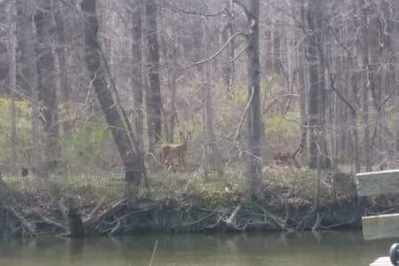 New RIVERFRONT! 2/GR8 Area/Kayaks/Hunt/Fish/2 Beds