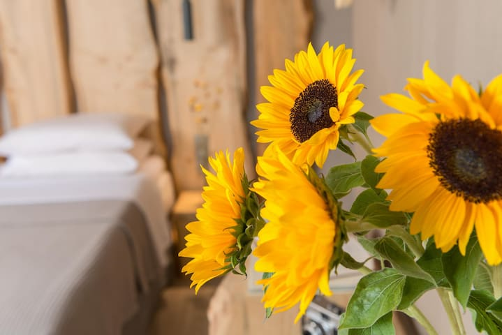 Rustic modern - heart of Meteora -walking distance