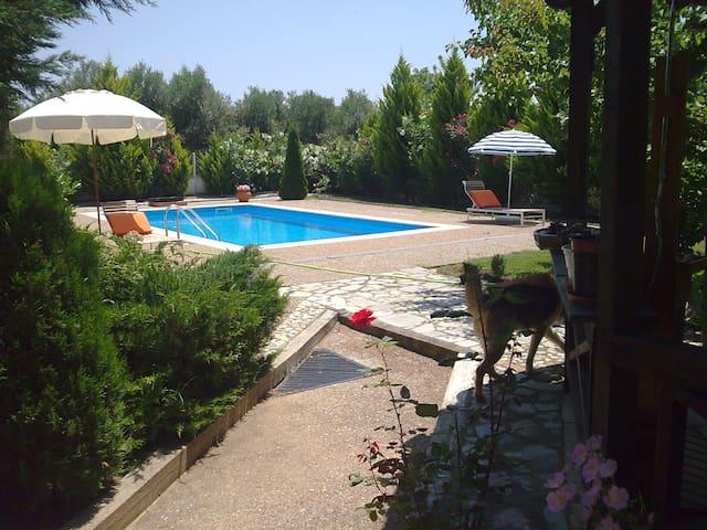 Μονοκατοικια με πισίνα, κιοσκι, BBQ - Nea Poteidaia - House