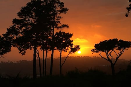 Pebble Beach jacuzzi and sunsets - Del Monte Forest