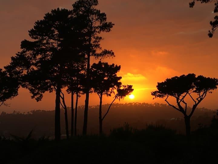 Pebble Beach garden views & sunsets