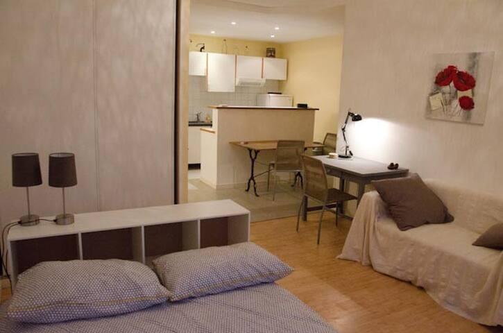 Grand Studio rénové dans une jolie toulousaine - Toulouse - Apartment