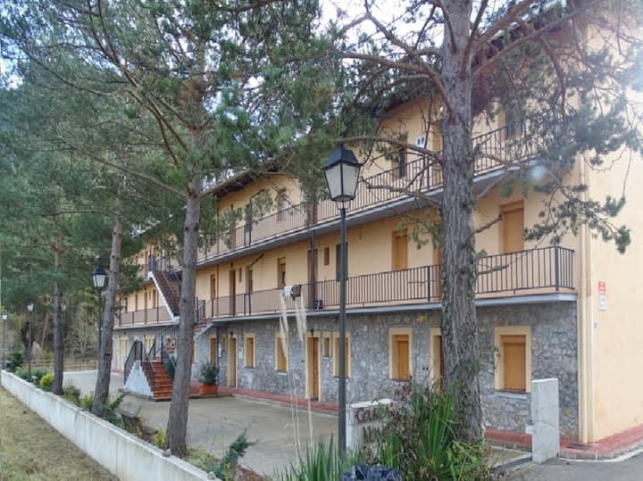 Apartamento rural en Los Pirineos