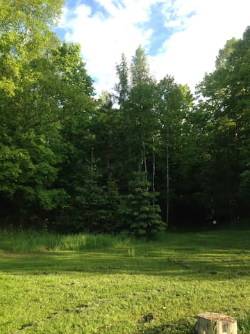 The cabin is on 3 acres of mostly-wooded property. Take a stroll.