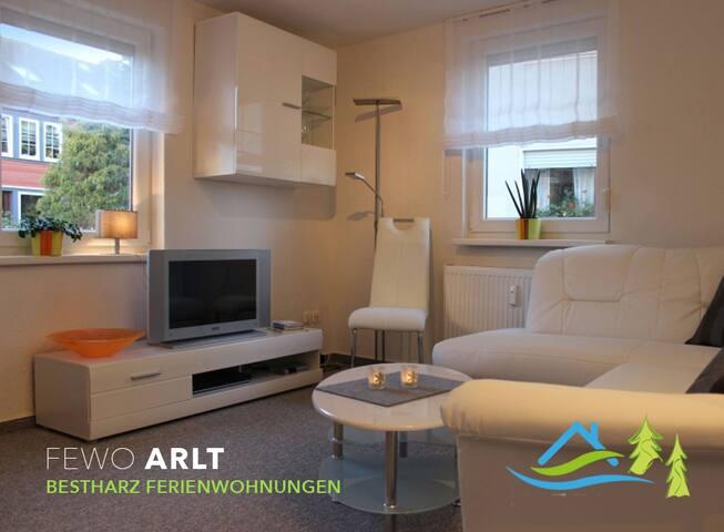 Ferienwohnung Arlt *** - Bad Harzburg - Apartment
