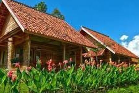 villa  - Garut - Villa