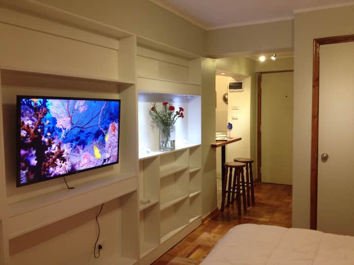 Apartamento Bellas Artes - Lastarria!!