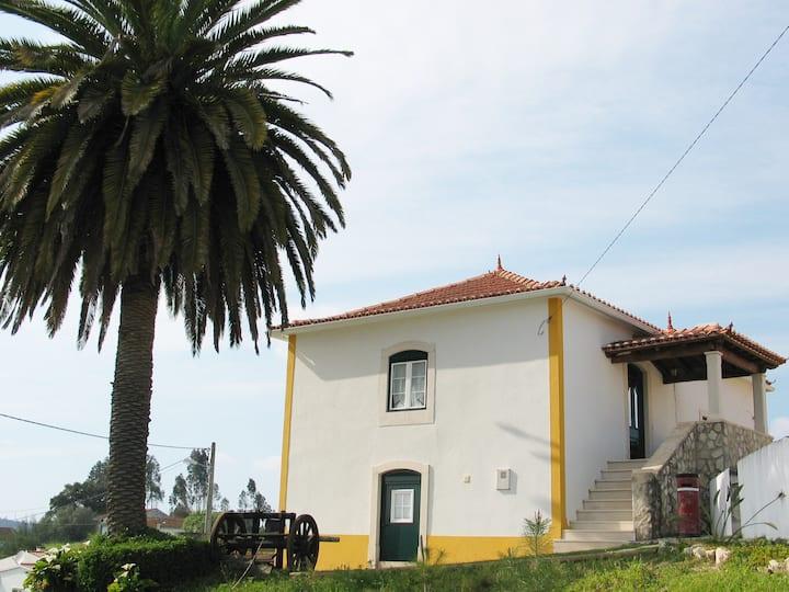 Casa da Palmeira - (Moradia)