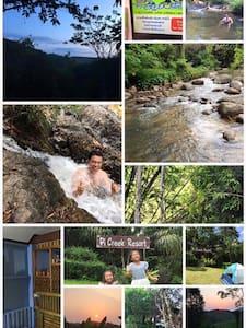 สัมผัสกับธรรมชาติ วิวสวยจากธารน้ำ - Takut Tai