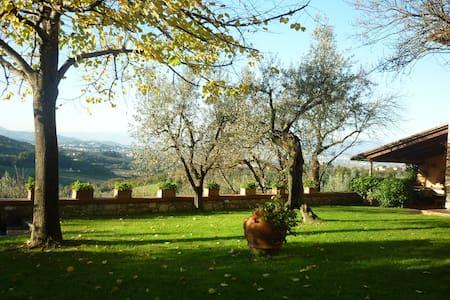 Villa il Mandorlo, Florence Country - Scandicci