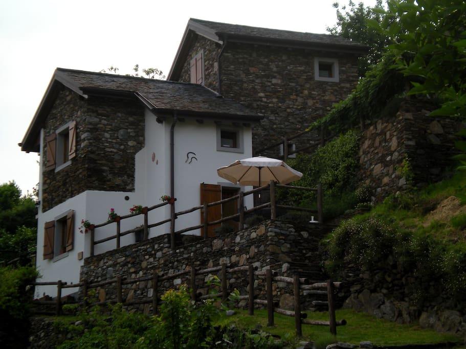 Le 2 formiche rustico 2 con giardino e terrazzo case - Formiche in bagno ...