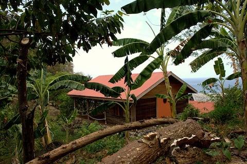 The Little House, Crayfish Bay Organic Estate