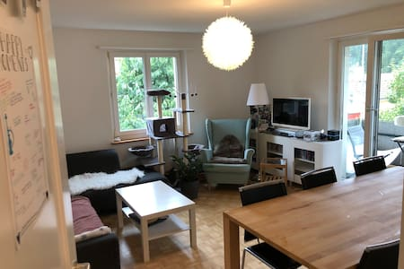 Lovely room in Schaffhausen