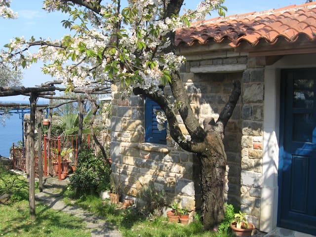 Charming Little House in Piran - Piran - Stuga
