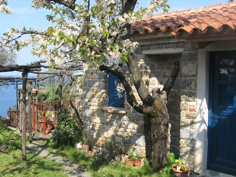 Charming Little House in Piran (with Free Parking)