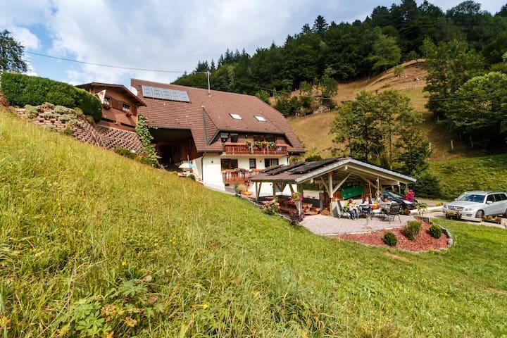Haus Wilde Rench - Fewo Kapellenblick