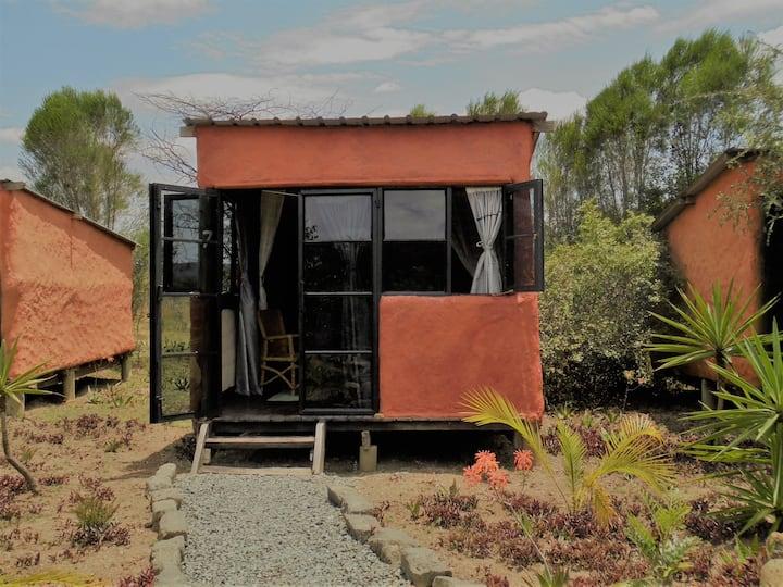 Punda Milias Nakuru Camp-Banda