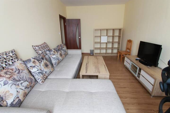 Cosy flat,the heart of Ulaanbaatar! - Ułan Bator - Apartament