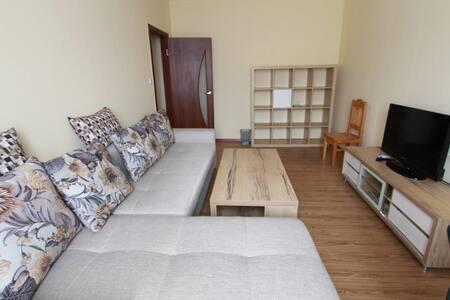 Cosy flat,the heart of Ulaanbaatar! - Ulaanbaatar - Apartmen