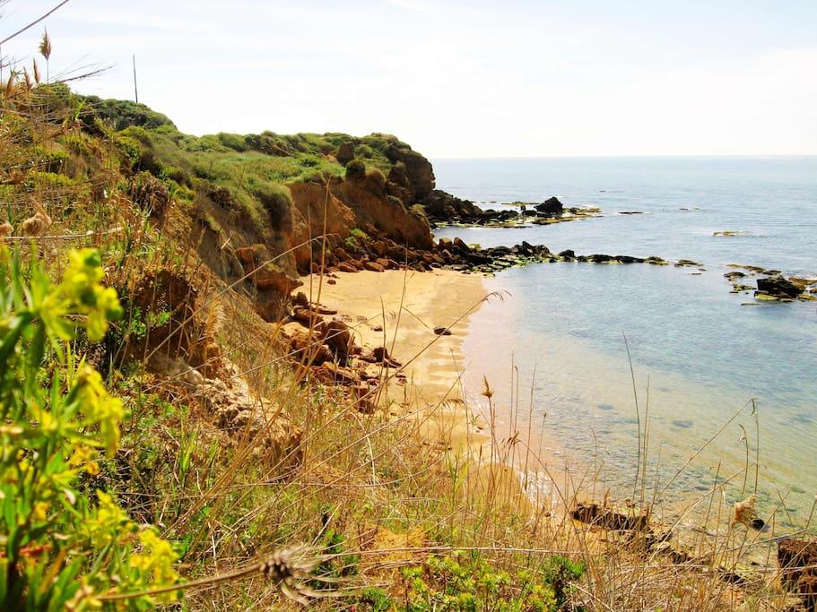 Spiaggetta Luchiceddu