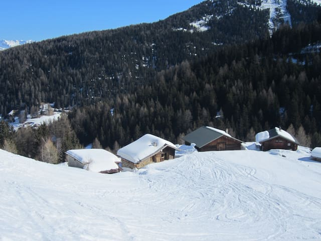 Chalet Savoyard typique - La Plagne - Casa