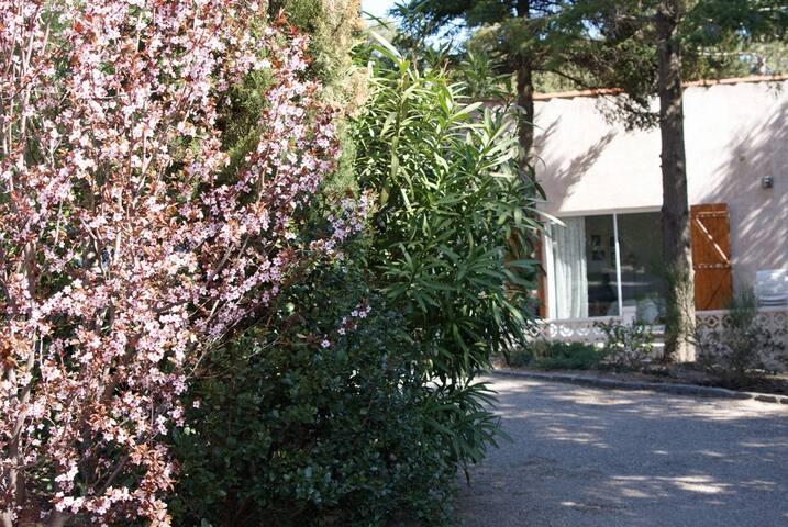 Sommarhus i charmigt vindistrikt - Faugères - Cabana