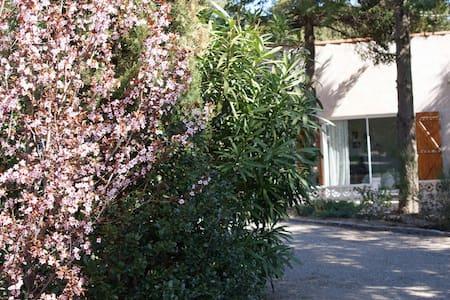 Sommarhus i charmigt vindistrikt - Faugères - Cabaña