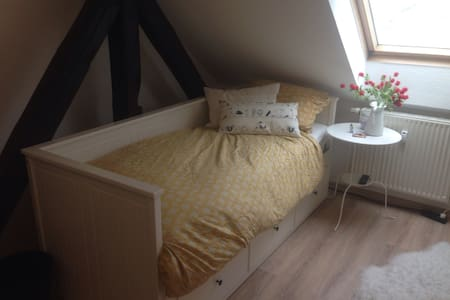 Charming private Room under the roof of Dresden - 德累斯顿 - 公寓