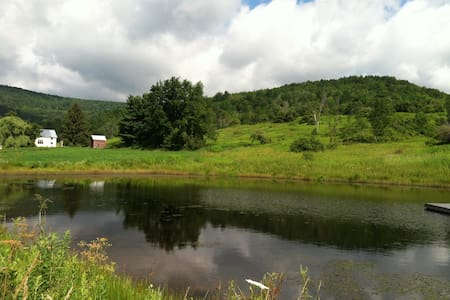 Handmade house on 70 acres - Cobleskill - House
