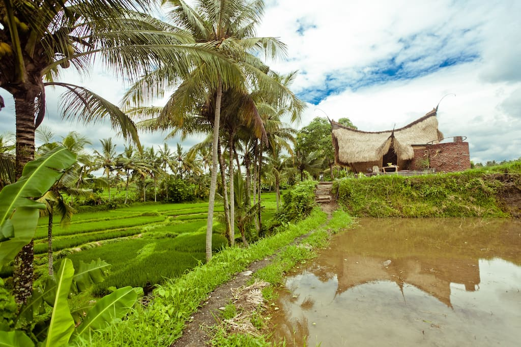 Basket Weaving Ubud : Bamboo eco cottage in rice fields huts for rent ubud