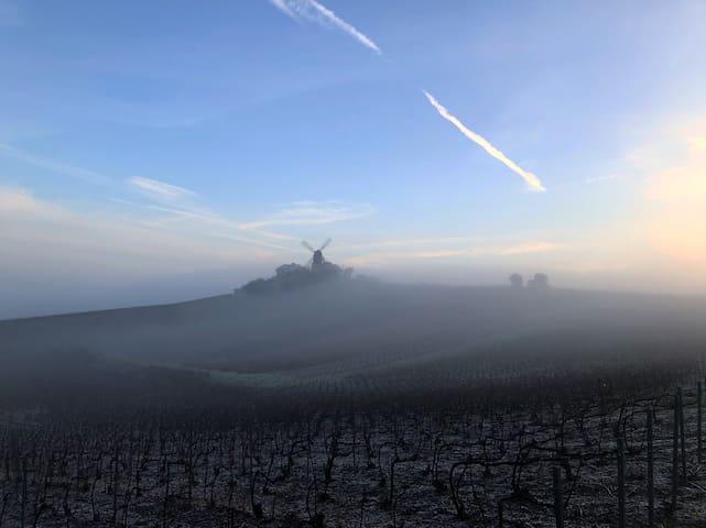 Gite rénové  pour 6/8 pers au 💚 des vignes!